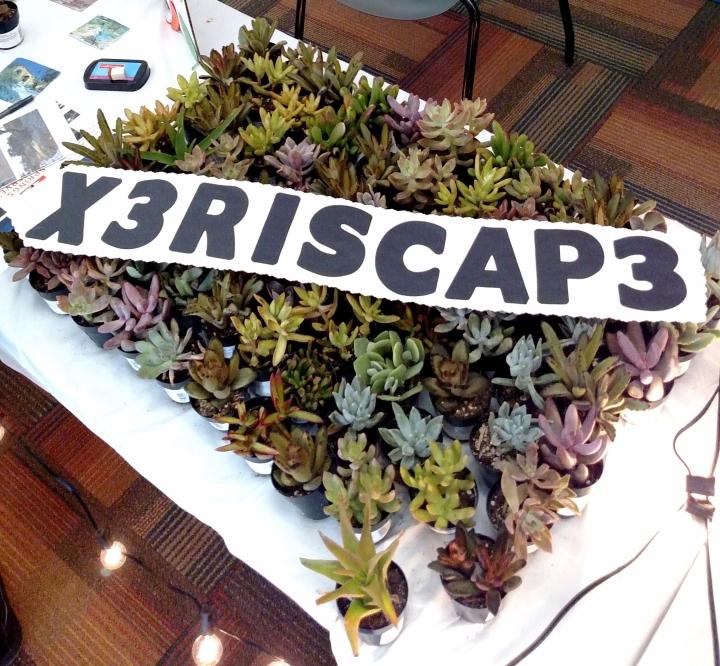 X3RISCAPE3